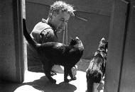 Albert Dubout Katzen