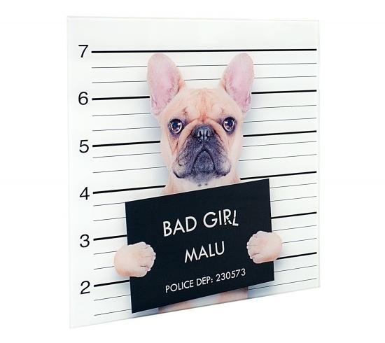 Wandbild Bulldogge Bad Girl